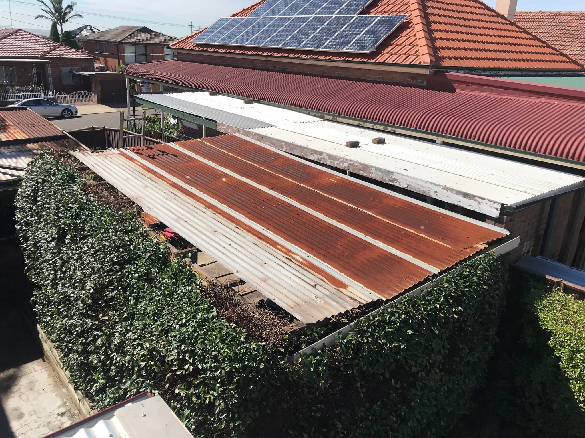 Roof Cleaning1-6